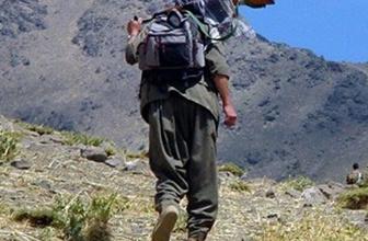 Bu ilde PKK'ya büyük darbe! 11 PKK'lı öldürüldü