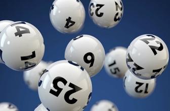 On numara sonuçları milli piyango bilet sorgulama!
