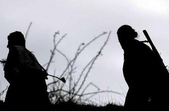 PKK'nın sözde 'Bagok' sorumlusu öldürüldü