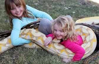 Çocukların 5 metrelik piton yılanı ile oyunu!