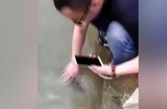 Görenleri şaşkına çeviren evcil balık