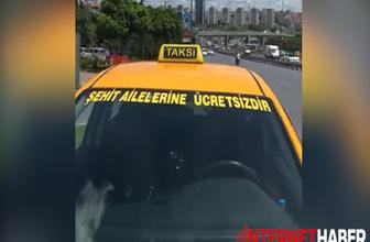 Taksicinin şehit ailesi duyarlılığı helal olsun dedirtti!