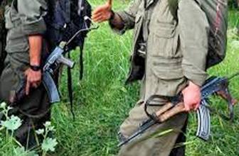 Erzurum Karaçoban'da 4 PKK'lı tutuklandı