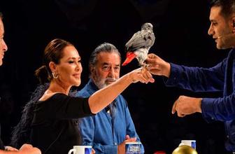 Yetenek Sizsiniz Türkiye'de Alper papağandan şaşkına çeviren gösteri