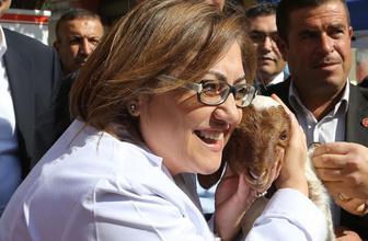 Gaziantep Büyükşehir 250 bin küçükbaş hayvana aşı yaptırıyor