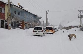 Bingöl'de kar kalınlığı 5 metreyi buldu