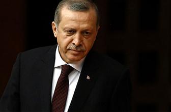 Erdoğan'a yeni başdanışman Gülnur Aybet kimdir?
