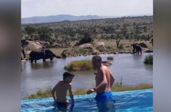 Erkan Petekkaya'nın safari keyfi