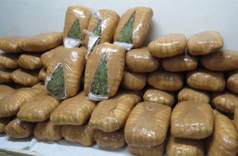 Uyuşturucu savaşları 23 bin can aldı! Irak ve Afganistan'dan fazla!