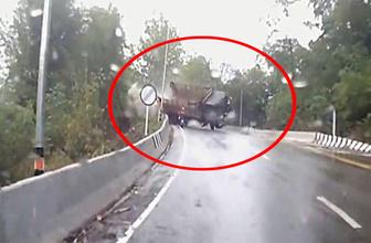 Tayland'da kamyon dehşeti!