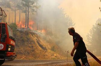 Alanya'daki yangında yürek yakan bilanço
