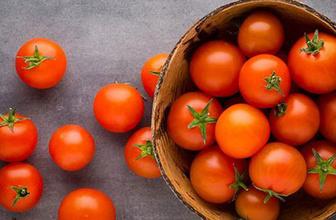 Meğer yanlış biliyormuşuz Canan Karatay'dan domates uyarısı
