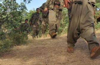 PKK'nın kritik ismi Şırnak'ta sağ ele geçirildi!