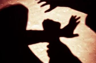 ABD'de cinsel tacizle suçlanan piskopos görevden alındı