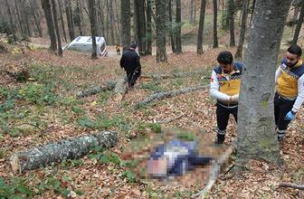 Ormanda kestiği ağaç ölümüne neden oldu