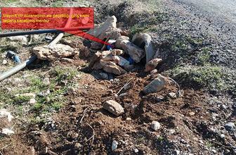 Diyarbakır'da tuzaklanan patlayıcı imha edildi