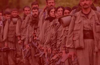 Kayseri'de 15 askerimizi şehit eden hain PKK'lı Almanya'da yakalandı