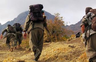 TSK 3 köyü daha PKK'dan temizledi