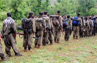 PKK'nın hain planına bakın Hakkari ve Şırnak'a 2 bin terörist...