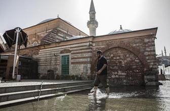 İstanbul'da akıl almaz görüntü: Tarihi camiyi denizanaları bastı!