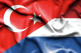 Hollanda'da 3 camiye çirkin saldırı