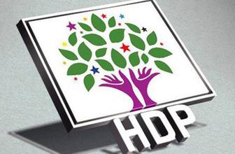 HDP'nin cumhurbaşkanı adayı açıklandı! Bakın kim