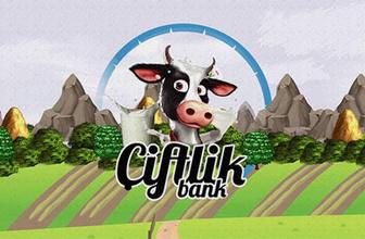 Çiftlikbank'ın beynine operasyon: İstanbul'da yakalandı!
