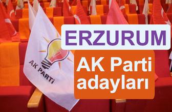 AK Parti Erzurum milletvekili adayları kimler 2018 listesi