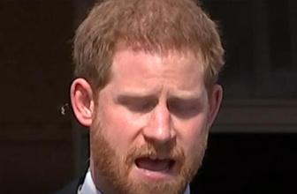 Prens Harry'yi düğün sonrası katıldığı ilk etkinlikte arı soktu
