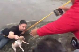 Muhabir sel sularındaki köpeği  böyle kurtardı