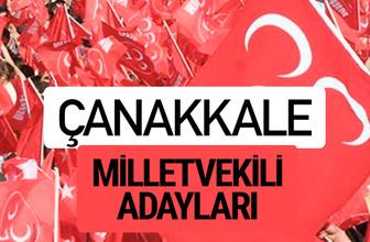 MHP Çanakkale milletvekili adayları 2018 YSK kesin listesi