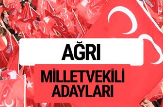 MHP Ağrı milletvekili adayları 2018 YSK kesin listesi