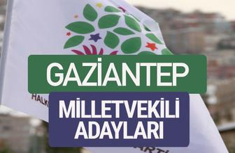 HDP Gaziantep milletvekili adayları 2018 YSK isim listesi