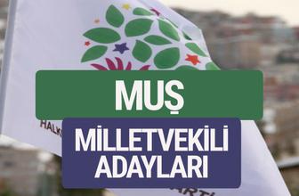 HDP Muş milletvekili adayları 2018 YSK isim listesi