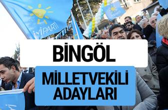 Bingöl İyi Parti milletvekili adayları YSK kesin isim listesi