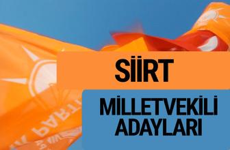 AKP Siirt milletvekili adayları 2018 YSK AK Parti kesin listesi