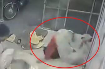 Tandıra düştü: O anlar kameraya böyle yansıdı