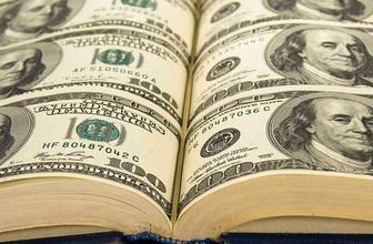 İsveç bankasından dolar kehaneti: Seçim öncesi...