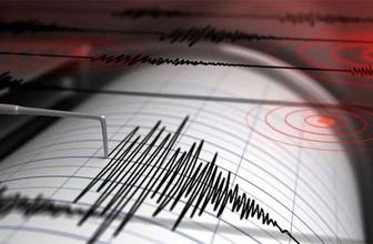 Muğla'da korkutan deprem Gökova Körfezi...
