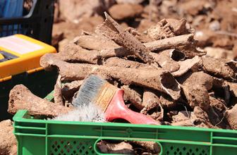 Denizli'de inşaat kazısında insan kemikleri ve sikke bulundu