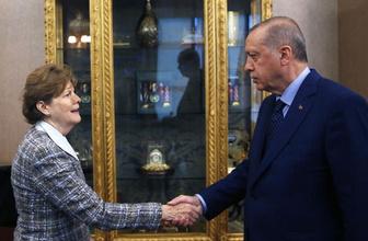 Erdoğan ABD'li senatörleri kabul etti dikkat çeken detay