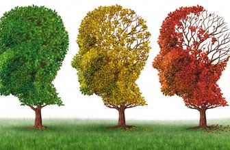 Alzheimer hastalığının önlenmesi için hangi aktiviteler yapılmalı?