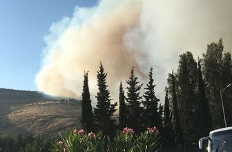 Amanos Dağları'nda çıkan yangın büyüyor