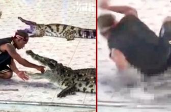 İnanılmaz anlar! Tayland'da timsah dehşeti