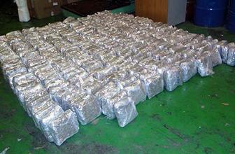 Sırbistan'da müthiş uyuşturucu operasyonu