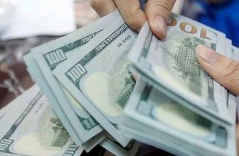 Fetva gibi dolar çağrısı: Dozdurmak farz-ı aynıdır