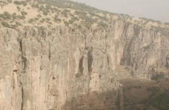 Cudi Dağı'nda PKK'lı 5 terörist öldürüldü