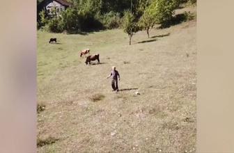 İlk kez drone gören adam sosyal medyayı salladı!