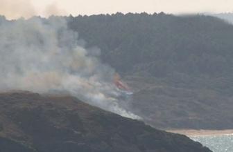 Beykoz'da orman yandı plajda denize girdiler