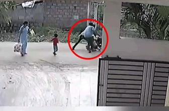 Sokak köpeği küçük çocuğa böyle saldırdı!